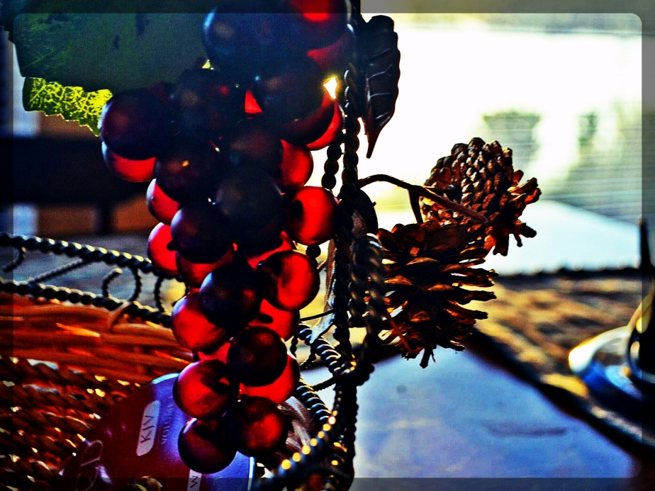 backlight grapes.jpg